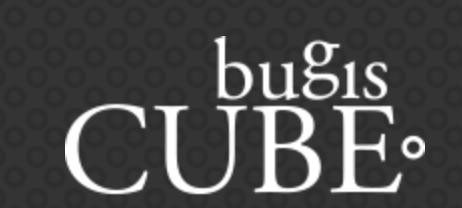 bugiscube